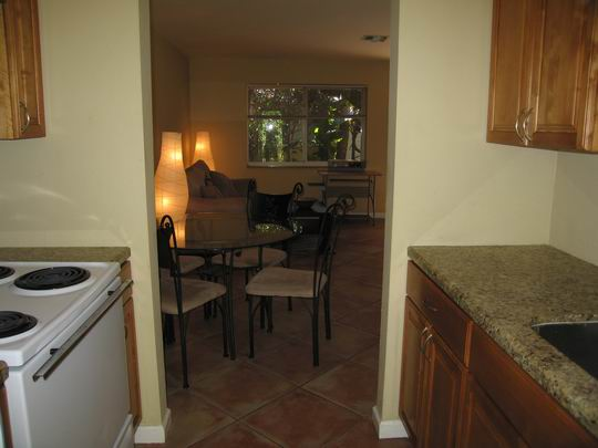 kitchen-looking-to-living-area